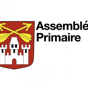 Assemblée Primaire Extraordinaire